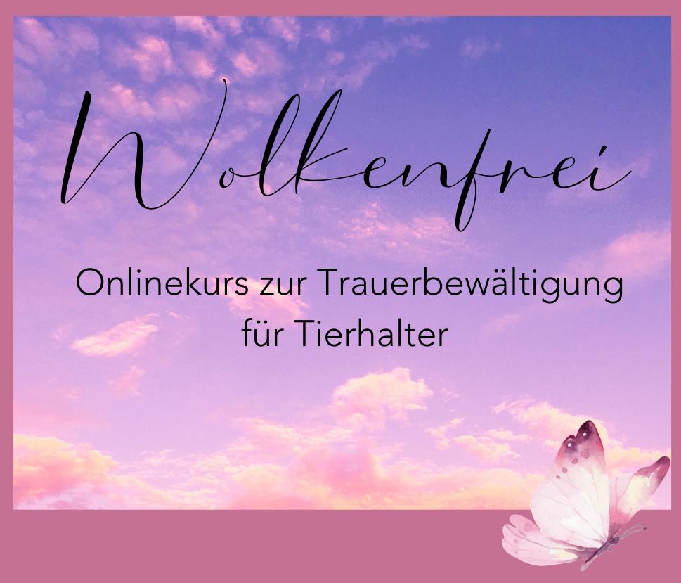 Wolkenfrei Online-Kurs